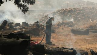 Τρία μέτωπα φωτιάς σε Βοιωτία και Δομοκό