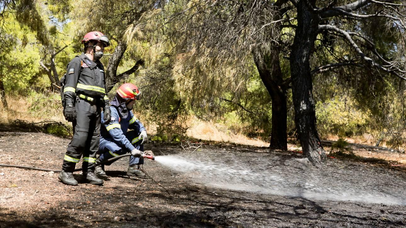 Υπό έλεγχο η πυρκαγιά στην Παιανία - Πού είναι υψηλός ο κίνδυνος πυρκαγιάς την Παρασκευή