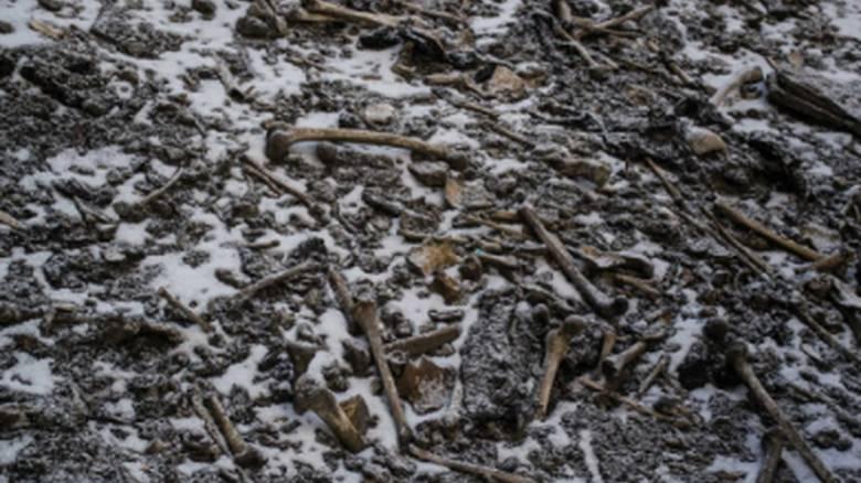 Μυστήριο στη «Λίμνη των Σκελετών» στα Ιμαλάια: Βρέθηκαν και σκελετοί «Ελλήνων»