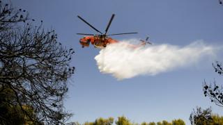 Κέρκυρα: Eκκενώθηκαν προληπτικά δύο οικισμοί - Δεν κινδυνεύουν σπίτια