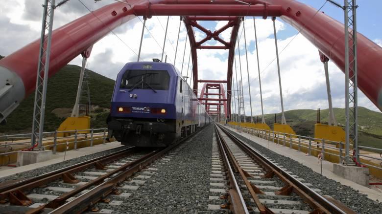 Βουβάλια έπεσαν σε τρένο που κινούνταν προς Αλεξανδρούπολη