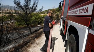 Συνελήφθησαν δύο εμπρηστές για τις πυρκαγιές σε Αμαλιάδα και Γαργαλιάνους
