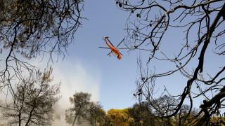 Πυρκαγιά στην περιοχή Μουρίκι Καλαβρύτων