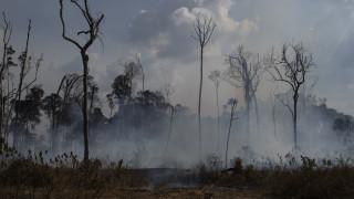 Βίντεο: Το μέγεθος της καταστροφής στον Αμαζόνιο από ψηλά