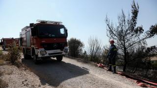 Πενήντα πέντε δασικές πυρκαγιές το τελευταίο 24ωρο-Πού θα είναι υψηλός κίνδυνος πυρκαγιάς την Τρίτη