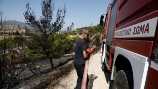 Τέσσερα μέτωπα πυρκαγιάς σε Θεσπρωτία, Κέρκυρα, Καβάλα και Θεσσαλονίκη