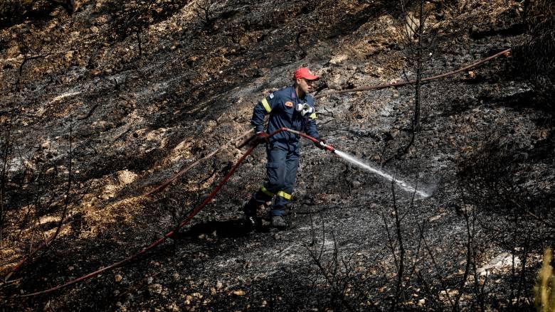 Mεγάλη φωτιά στην Κέρκυρα: Εκκενώθηκαν δύο χωριά - Τι λέει η αντιπεριφερειάρχης στο CNN Greece