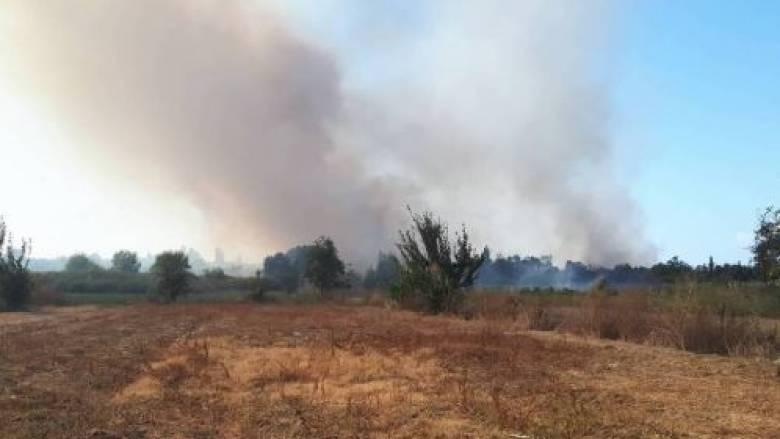 Υπό έλεγχο η φωτιά στην Κέρκυρα