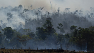 Αμαζόνιος: Η Βραζιλία αποδέχεται τελικώς τη διεθνή οικονομική βοήθεια υπό όρους