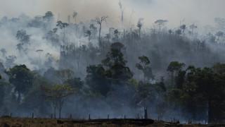 Χώρες της Λατινικής Αμερικής θα συναντηθούν για τον Αμαζόνιο - Βοήθεια από τη Χιλή για τις πυρκαγιές