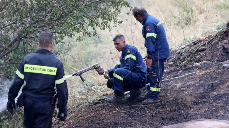 Σε ύφεση οι πυρκαγιές σε Αρτέμιδα και Τανάγρα
