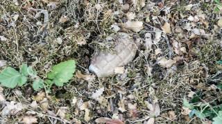 Χανιά: Βρέθηκε χειροβομβίδα σε αυλή σπιτιού