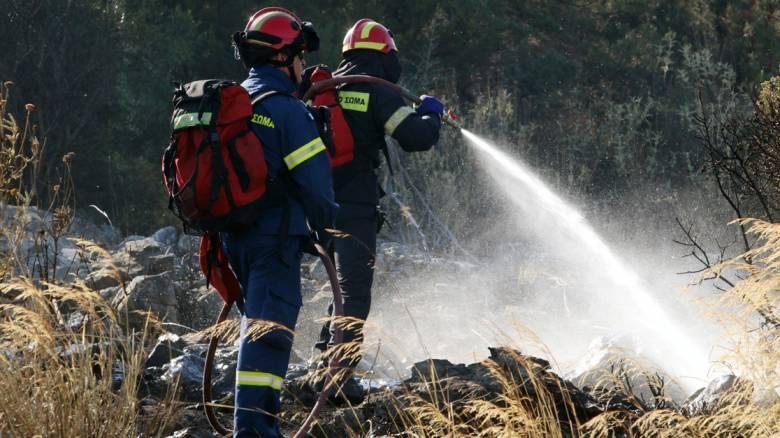 Πυρκαγιά κοντά σε εργοστάσια στη γέφυρα Λυματων στην Ε.Ο. Αθηνών - Λαμίας