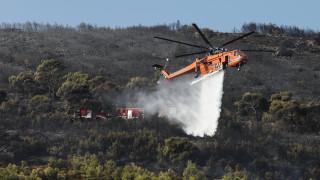 Φωτιά Νέα Μάκρη: Σε ύφεση τα πύρινα μέτωπα - Ενδείξεις για εμπρησμό
