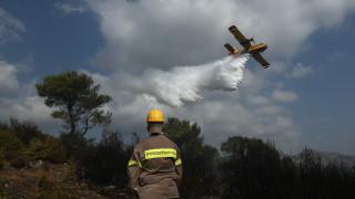 Φωτιά στη Νέα Μάκρη: Το προφίλ του εμπρηστή που σκιαγραφούν οι αρχές