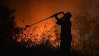 Εύβοια: Πυρκαγιά σε περιοχή κοντά στην Κάρυστο