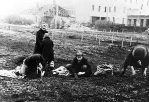 1943, Βαρσοβία. Μια οικογένεια στη Βαρσοβία προσπαθεί να καλλιεργήσει ένα κομμάτι άγονης γης στα προάστια της πόλης. Τα λαχανικά τα οποία ελπίζουν να μπορέσουν να καλλιεργήσουν είναι τα μόνα τρόφιμα τα οποία μπορούν να βρουν κατά τη διάρκεια της γερμανική