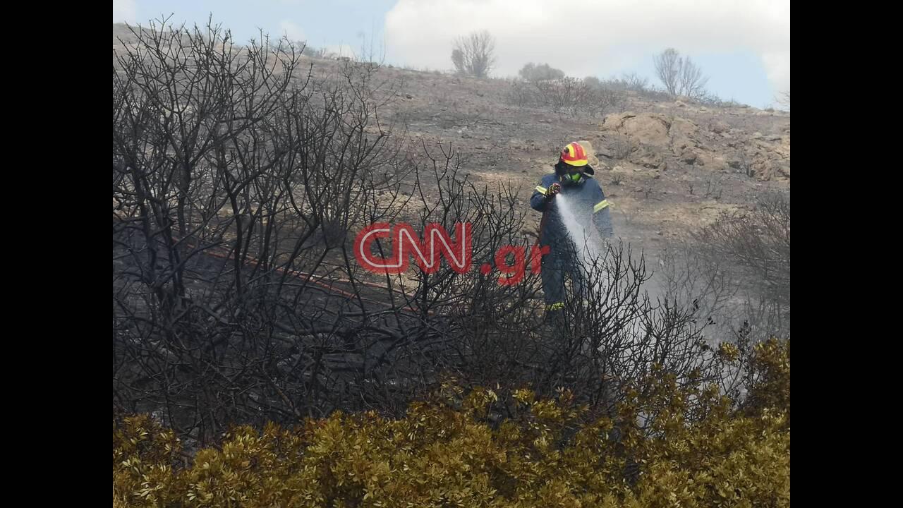 https://cdn.cnngreece.gr/media/news/2019/09/13/190497/photos/snapshot/lagonhsi5.jpg