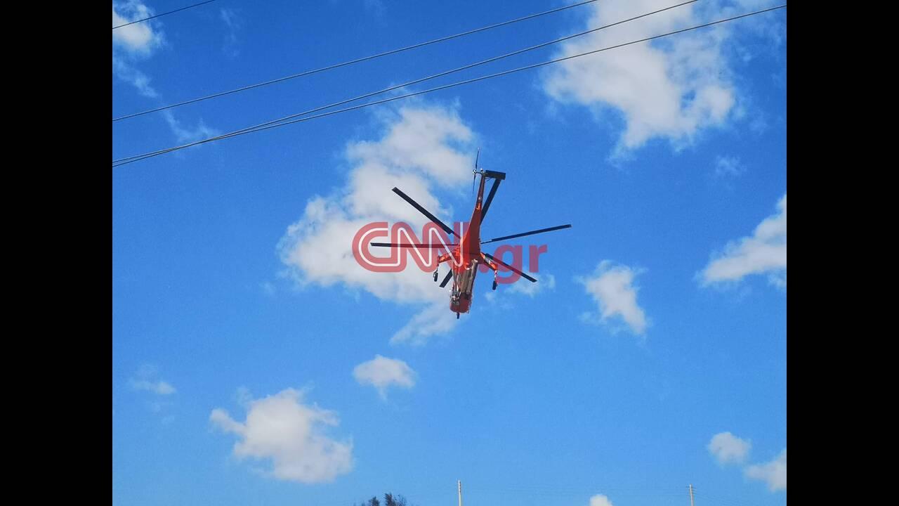 https://cdn.cnngreece.gr/media/news/2019/09/13/190497/photos/snapshot/lagonhsi6.jpg