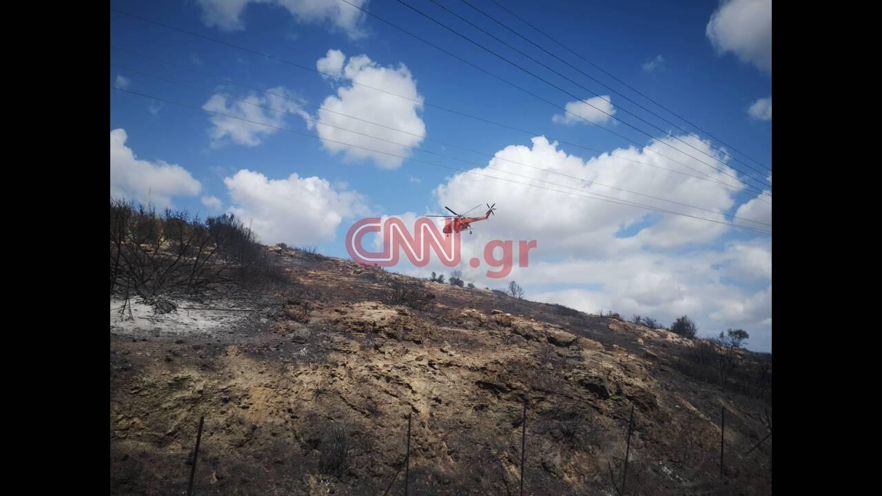 https://cdn.cnngreece.gr/media/news/2019/09/13/190497/photos/snapshot/lagonisinew2.jpg