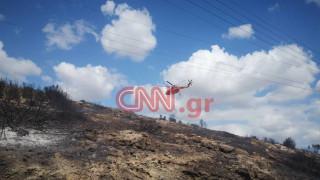 Φωτιά σε κατοικημένη περιοχή στο Λαγονήσι: Καλύτερη η εικόνα του μετώπου
