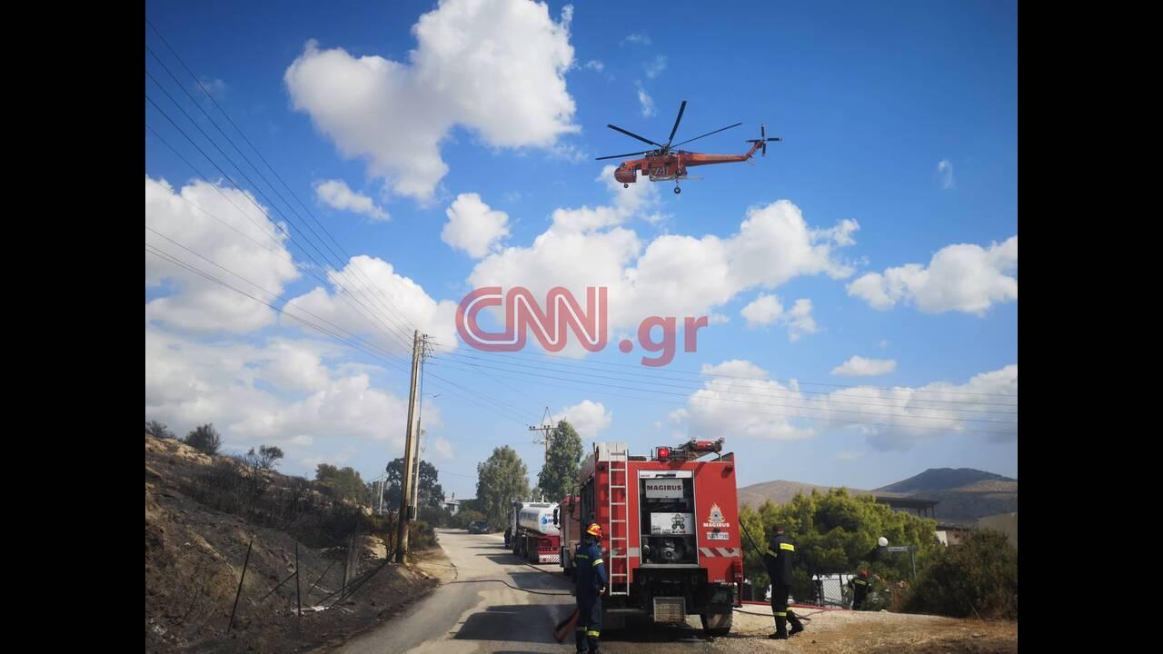 https://cdn.cnngreece.gr/media/news/2019/09/13/190515/photos/snapshot/lagonisinew.jpg