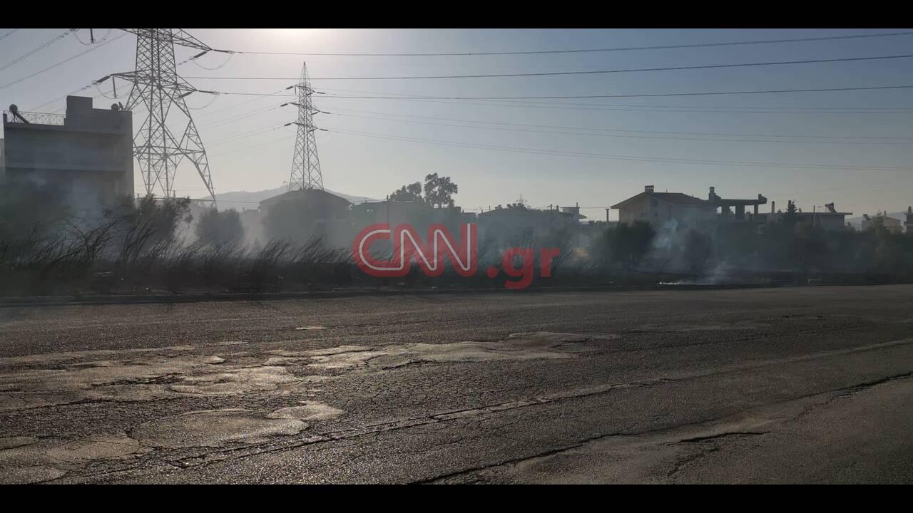 https://cdn.cnngreece.gr/media/news/2019/09/14/190561/photos/snapshot/70263578_513180159513192_7912739681031159808_n.jpg