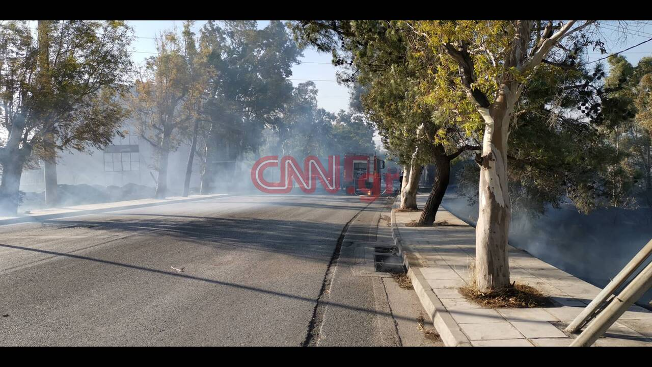 https://cdn.cnngreece.gr/media/news/2019/09/14/190561/photos/snapshot/fwtiamenidi.jpg