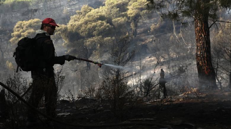 Φωτιά στην Κεφαλονιά: Τέθηκε υπό μερικό έλεγχο