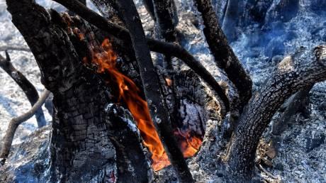 Φωτιά στο Λουτράκι: Συνεχίζεται η μάχη με τις φλόγες - Πολλές εστίες και αναζωπυρώσεις