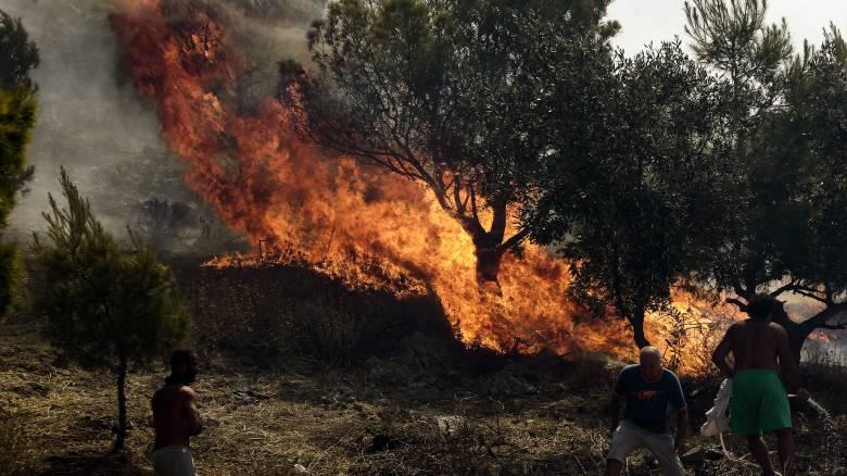 Φωτιά στη Ζάκυνθο: Πύρινο μέτωπο κατευθύνεται προς χωριό