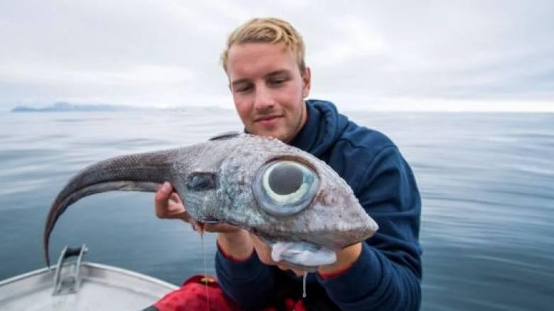 Ένα αλλόκοτο «εξωγήινο» ψάρι έπιασε ένας νεαρός Νορβηγός
