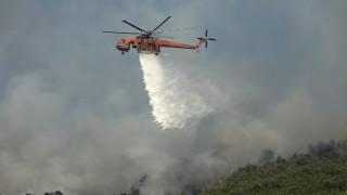 Φωτιά σε δασική έκταση στη Ζάκυνθο