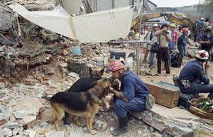 1985, Μέξικο Σίτι. Ένας διασώστης κάνει ένα διάλειμμα και χαϊδεύει το σκύλο του. Οι δύο τους αναζητούν, κάτω από τα συντρίμια, θύματα του καταστροφικού σεισμού που χτύπησε την πόλη.