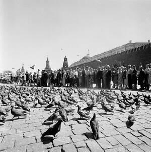 1959, Μόσχα. Περιτριγυρισμένοι από περιστέρια, άνθρωποι περιμένουν στην ουρά για να μπουν στο μαυσωλείο και να δουν τα σώματα του Λένιν και του Στάλιν στην Κόκκινη Πλατεία. Ο τάφος είναι κλιματιζόμενος και χιλιάδες άνθρωποι το επισκέπτονται κάθε μέρα. Πίσ