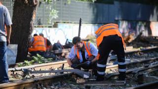 Εικόνες από τις εργασίες αποκατάστασης των ζημιών στον ηλεκτρικό μετά από πτώση δέντρου