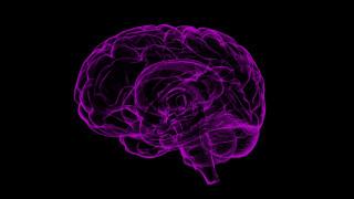 Γιατί γινόμαστε επιθετικοί όταν ακούμε κραυγές; Τι λένε οι επιστήμονες