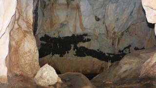 Ανακαλύφθηκε η μεγαλύτερη αποικία νυχτερίδων στην Ελλάδα