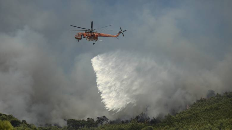 Φωτιά στην Τροιζηνία: Μεγάλη κινητοποίηση της Πυροσβεστικής