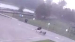 Σοκαριστικό βίντεο: Κεραυνός χτυπά άνδρα ενώ περπατά
