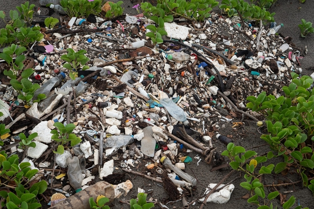 Honduras Beach 02 HD 1920x1280