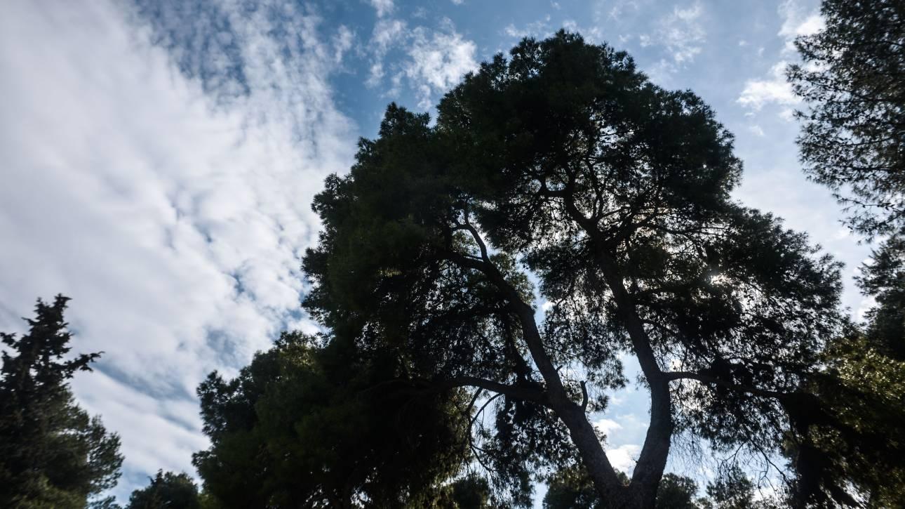 Καιρός: Αίθριος με ανέμους στο Αιγαίο