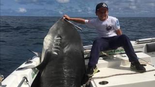 Απρόσμενη λεία για 8χρονο: Έπιασε καρχαρία τίγρη… 314 κιλών