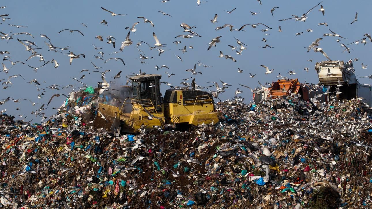 Γιατί η Ρουμανία εισάγει σκουπίδια;