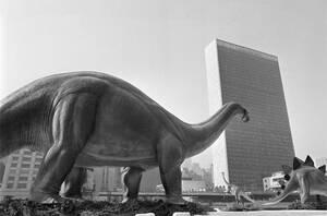 1963, Νέα Υόρκη. Ο βροντόσαυρος της φωτογραφίας, μαζί με 8 συντρόφους του, μεταφέρθηκε στην καρδιά του Μανχάταν από μια εταιρεία πετρελαιοειδών για να κοσμήσει το περίπτερό της στην Έκθεση Εμπορίου.