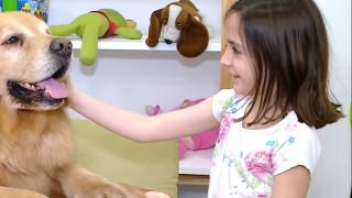 Ο πρώτος σκύλος θεραπευτής για κακοποιημένα παιδιά στο Μπουένος Άιρες