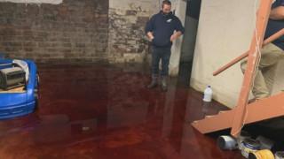 Σκηνή από ταινία τρόμου: Κατέβηκαν στο υπόγειό τους και το βρήκαν πλημμυρισμένο με... αίμα