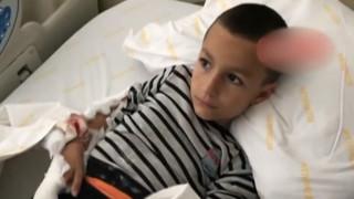 Τουρκία: 7χρονος δέχθηκε επίθεση από σκύλο - Νοσηλεύεται τραυματισμένος
