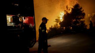 Αντιπυρική περίοδος: Η συνολική έκταση που κάηκε στην Ελλάδα «αγγίζει» τα 88.980 στρέμματα