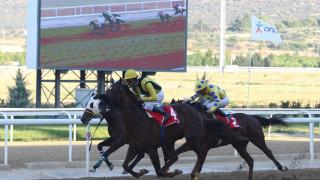 Το κύπελλο ΟΥΙΛΛΙΑΜ ΡΗΖ στην πρώτη ιπποδρομιακή συγκέντρωση του Νοεμβρίου στο Markopoulo Park